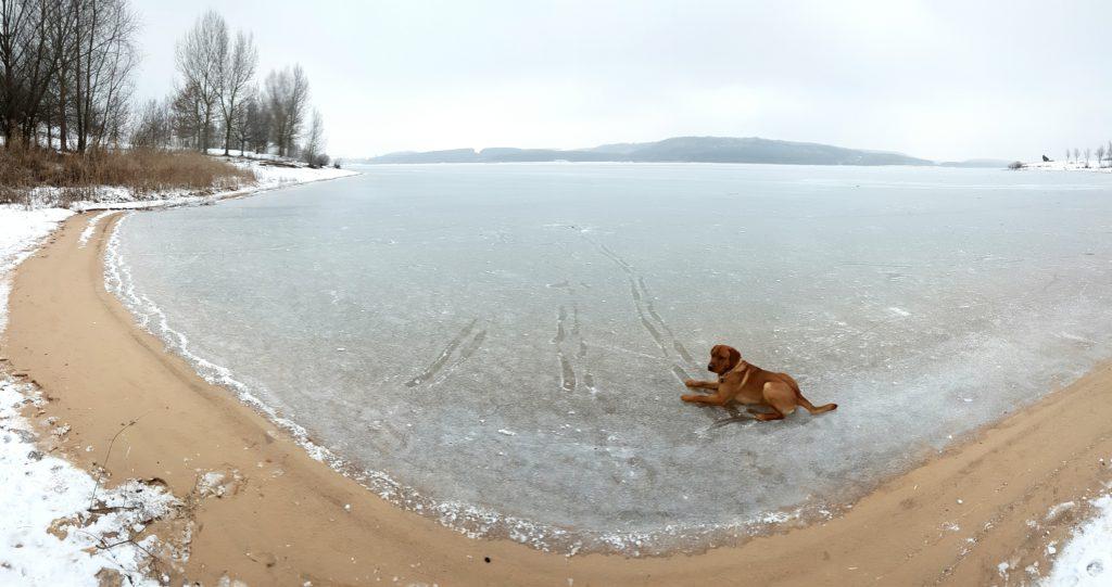Nach der langanhaltenden Kälte ist schließlich auch der Große Brombachsee nahezu komplett zugefroren.