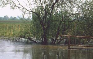 Hochwasser an der Walder Altmühlbrücke