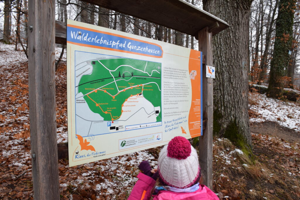 "Tafel auf dem Walderlebnispfad ""Klaus, die Fledermaus"""