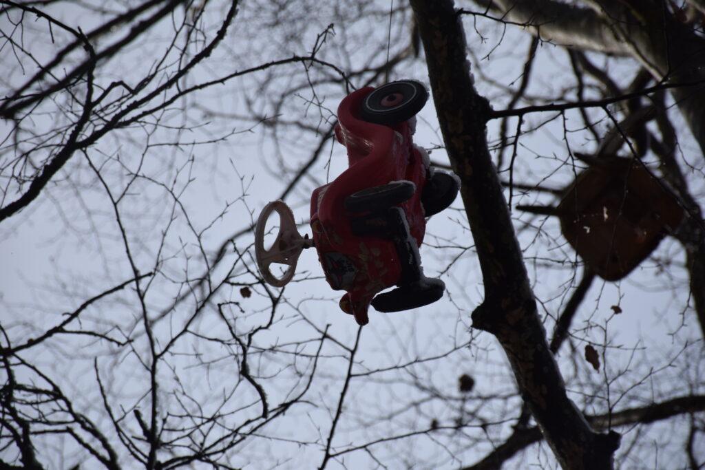Bobbycar im Baum   Foto: Vera Held